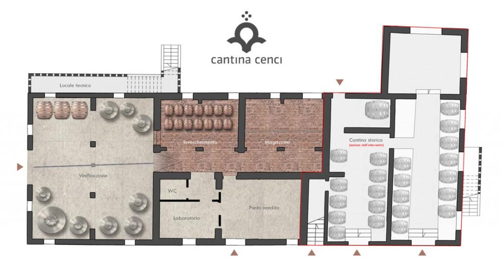 Cantina-Cenci-Pianta