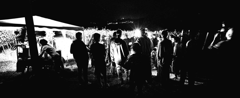 Vendemmia-notturna-Cantina-Cenci-2014-4